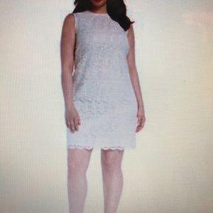 Calvin Klein Plus Size Lace Sheath Cream